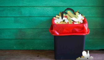 Besin Kirliliği ve Gıda Hijyen Yönetmeliği