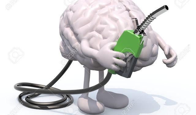 İnsan Beyni Tamamen Dolabilir Mi ?