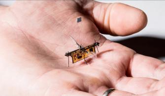 Sinek Büyüklüğünde Uçabilen Mikro Robot: Robofly